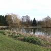 Lake by Lower Chilworth Farm