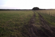 Farm Land near Calrossie