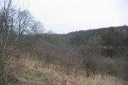 Scrubland, Windygates.