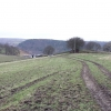 Fields around Fox Lane Farm.