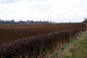 Farmland near the road to Kilham