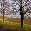 Playing fields by Kellaway Avenue