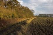 Farmland near Pyrton