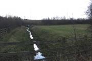 stream in horse pasture