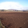 Ploughed Field Near Wellford