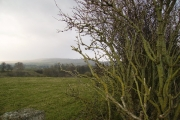 Farmland near Ingleton