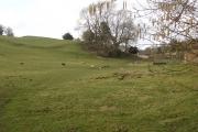 Farmland near Whitecliff