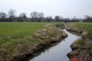 River Gowy near Holme Farm, Plemstall
