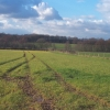 Farmland near Mansfield Woodhouse