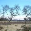 View across Leash Fen.
