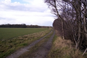 Farmland near Eccleston