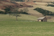 Farmland by Collairnie