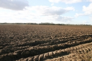Ploughed Field at Grove Farm