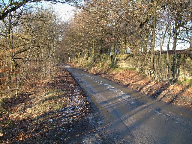 Burrs Wood.