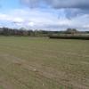 Farmland, Wigborough, South Petherton, Somerset