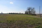 View towards Broom Court