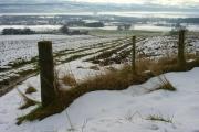 Farmland on Cnoc Navie