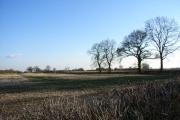 Farmland near Chetwode