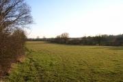 Farmland near Preston Bissett