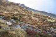 South Shore of Loch Sligachan