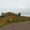 Summit of Knockfarrel
