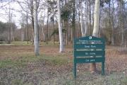 Dene Park