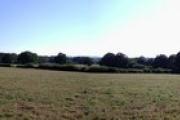 Church Field