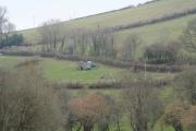 Duloe: hedging near Trelawne Mill Farm