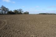 Farmland west of Chalgrove