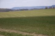 Farmland above Cuxham