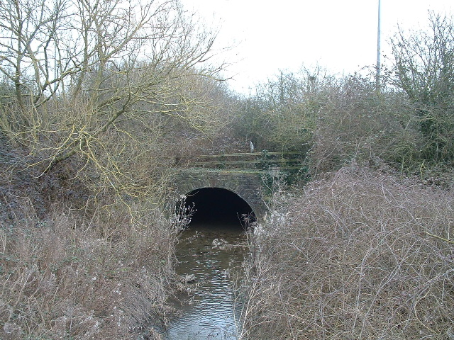 Rather overgrown Folly Bridge over Folly Brook