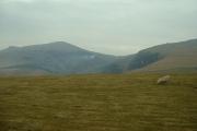 Farmland near Cwm Dulyn