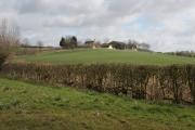Farmland near Thorpe Satchville