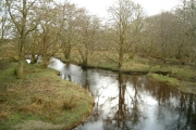 Kilmartin River in woodland