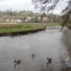 River Wey at Godalming