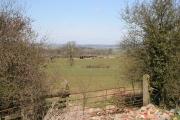 Brooker Farm off Stygate Lane