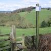 Footpath leading to Shaw Wood