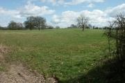 Field nr. Lower Bentley