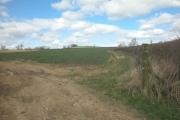 Ilbury Farm