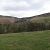 View to Pye Greave Farm