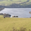Combs Reservoir from Whitehills