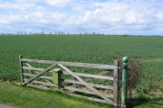 High Easton Farm