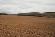 Moultavie field