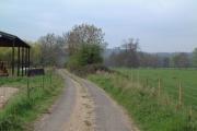Ankerwyke Farm