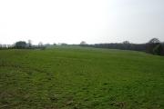 Farmland West of Bretby Mill