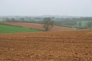 Farmland near Scalford, Leicestershire