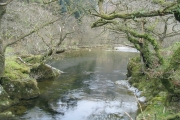 River Irfon Washpool