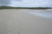 Footsteps on Traigh Bail