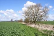 Baldon Brook