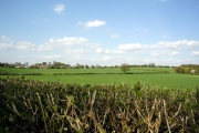 Farmland south east of Barton Stacey